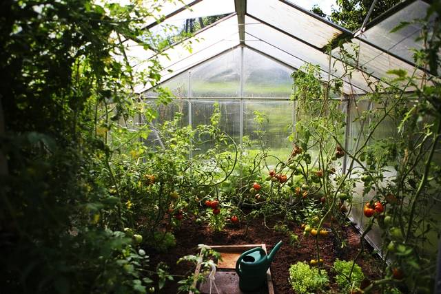 Readymade Greenhouses